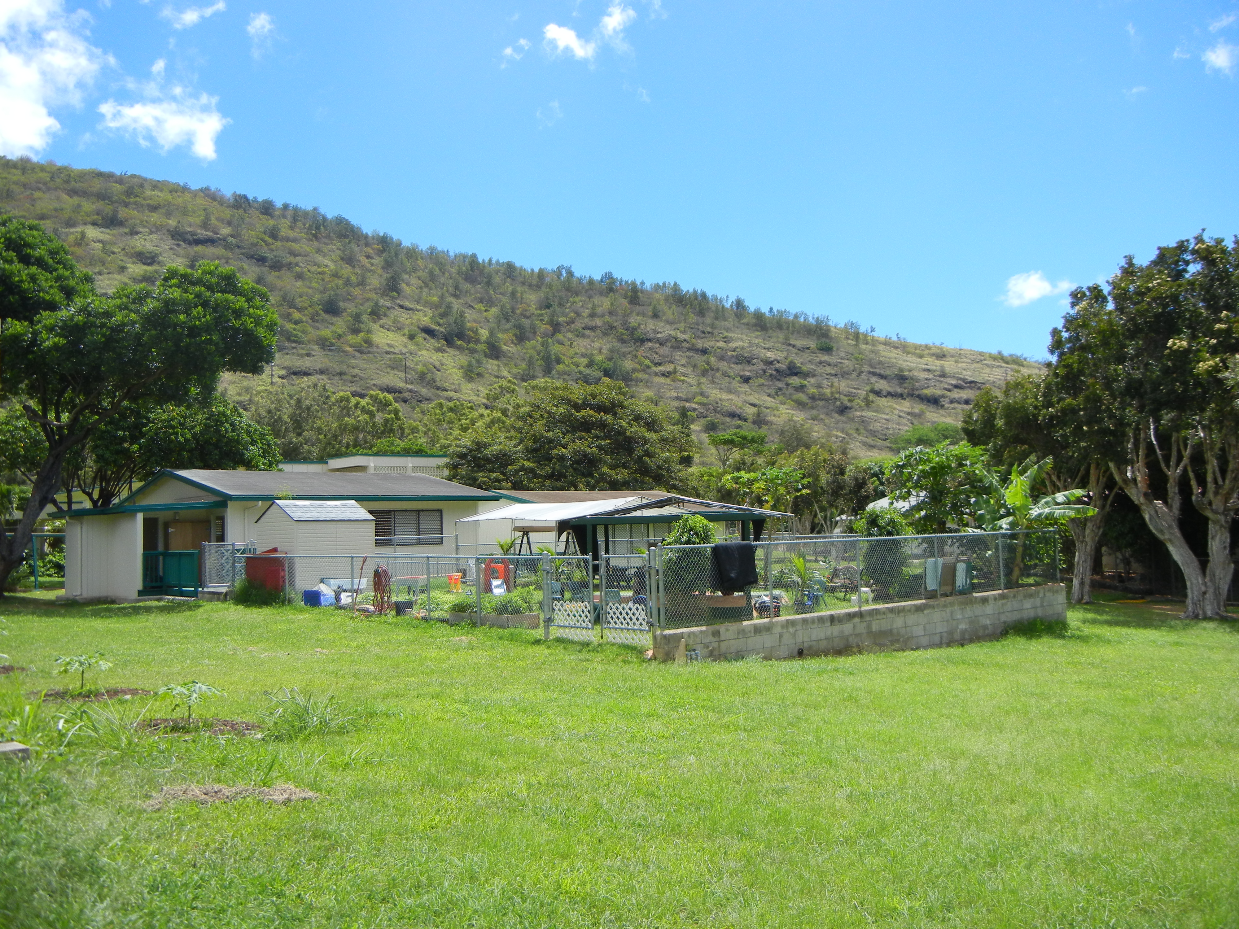 Noelani yard view