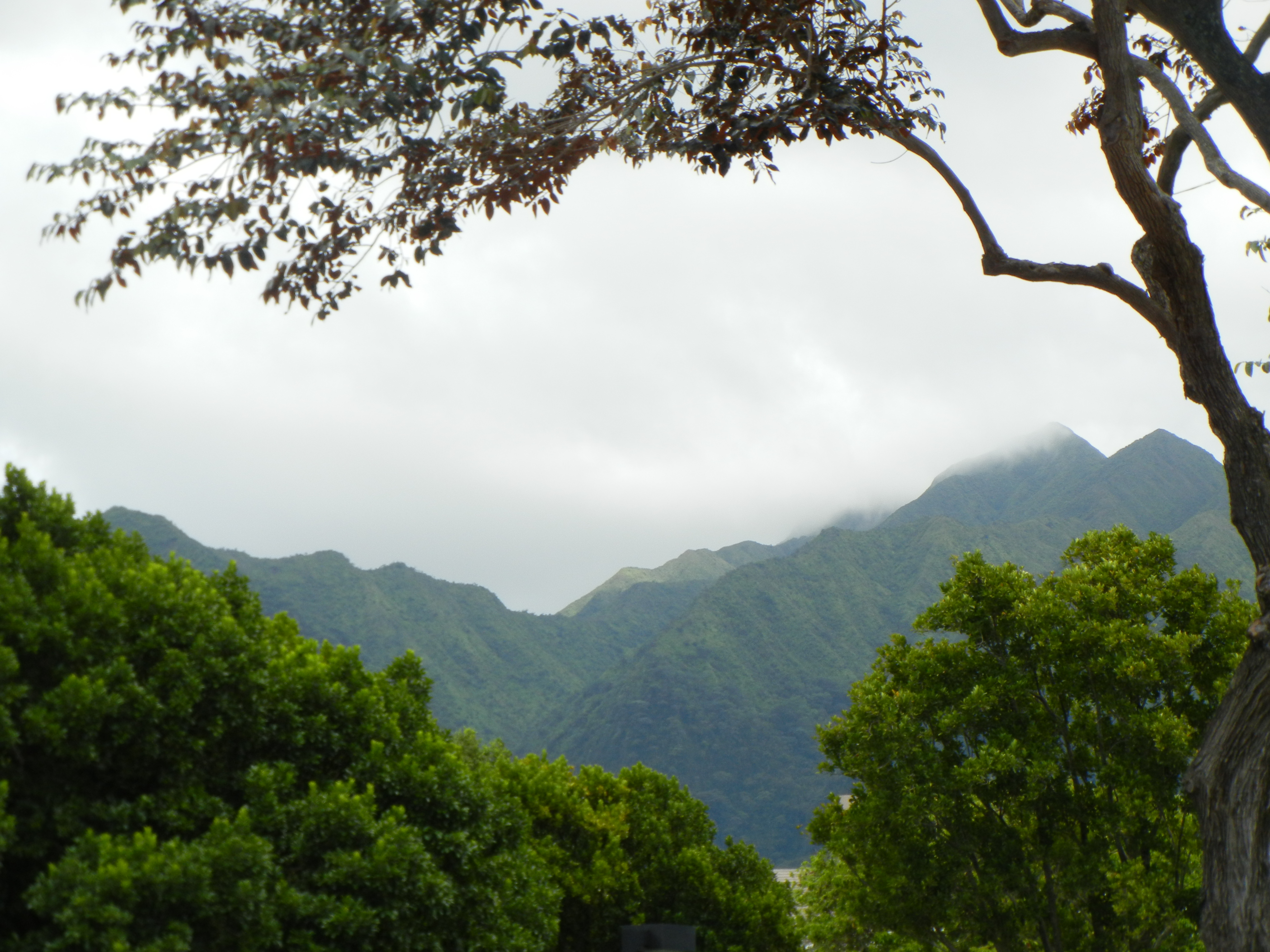 Mānoa Valley