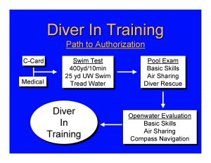 picture of flow chart on path to authorization to become a diver in training.