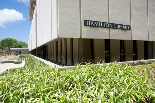 exterior of newly landscaped Hamilton Library