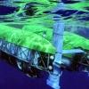 Nereus underwater