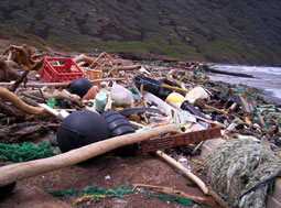 marine debris piled on beach