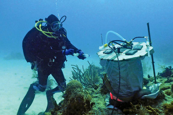 diver checking underwater scientific equipment