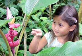 A young visitor points out a banana plant