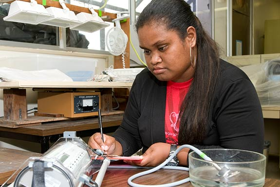Mailie Ngiriou, from Palau doing research in a lab