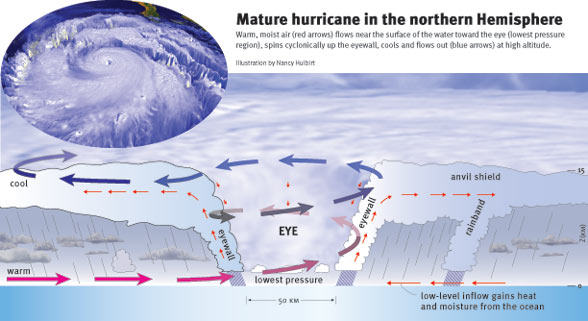 diagram of a mature hurricane