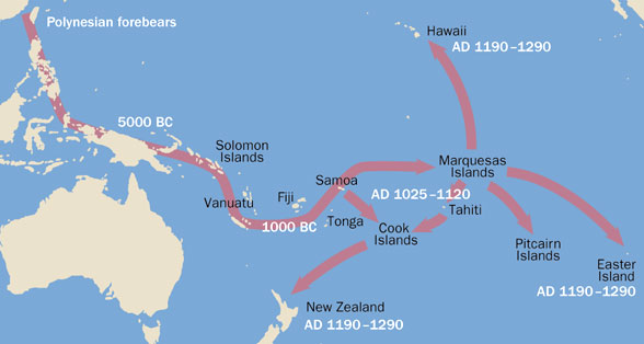 map with arrows showing probable migration routes of Polynesian ancestors from China, through the Philippines and Indonesia to the Marquesas Islands and then outward to Tahiti, Hawaii, Easter Island and New Zealand from China through Polynesia