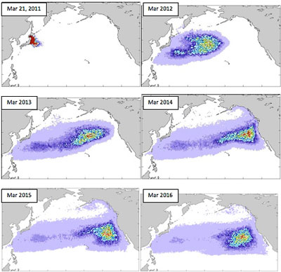Series of drawings showing field of debris moving east across Pacific Ocean