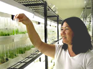 woman in plant lab