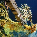 HURL enables discovery of dramatic Pacific ecosystem shift