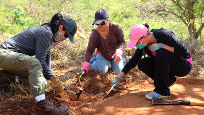 UH West Oʻahu students conducting investigative fieldwork at Honouliuli Internment and POW Camp in Kunia is one of two programs featured in the public service announcements airing on KFVE The Home Team.