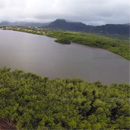 Blending culture and technology to restore Hawaiian fishponds