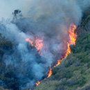 Hawaiʻi wildfires strongly linked to human activity