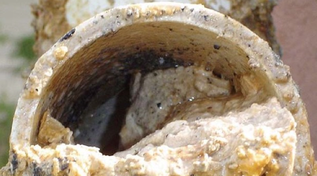 Fatberg in Texas