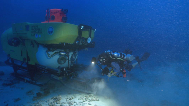 diver and submersible explore deep reefs