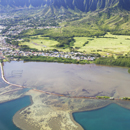 NOAA designates Heʻeia National Estuarine Research Reserve