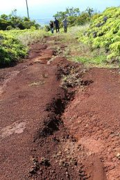 dirt road with deep cracks