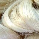 Jute fiber genomes could help improve production of natural fiber