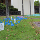UH Hilo flag display creates awareness of sexual assault