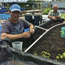 UH Hilo takes first step to developing a certificate in sustainability