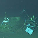 Deepest ocean observatory celebrates ten years of operation