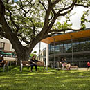 First Year Programs help UH Mānoa freshmen transition smoothly into college life