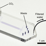 Water filtering technology would use 1000-times less energy than conventional methods