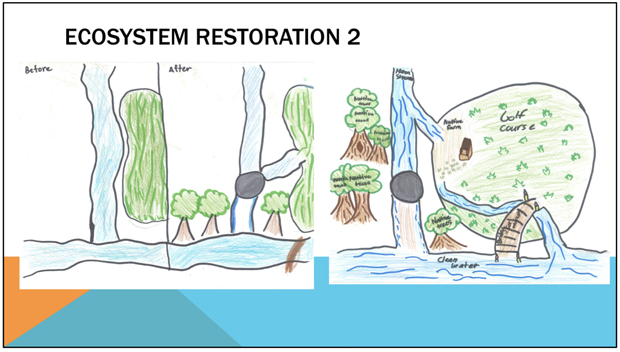 drawing of Ala Wai watershed ecosystem restoration with before and after effects