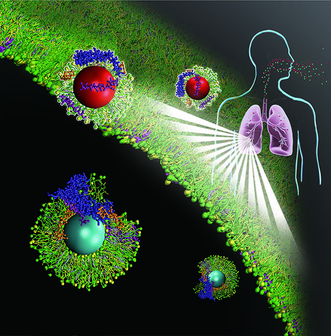 graphic of nanoparticles in lungs