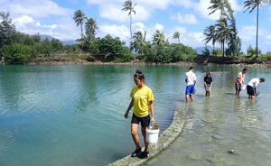Students collecting samples