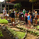 Sustainable agriculture practiced at UH Hilo learning gardens