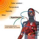 27 ways heatwaves can kill