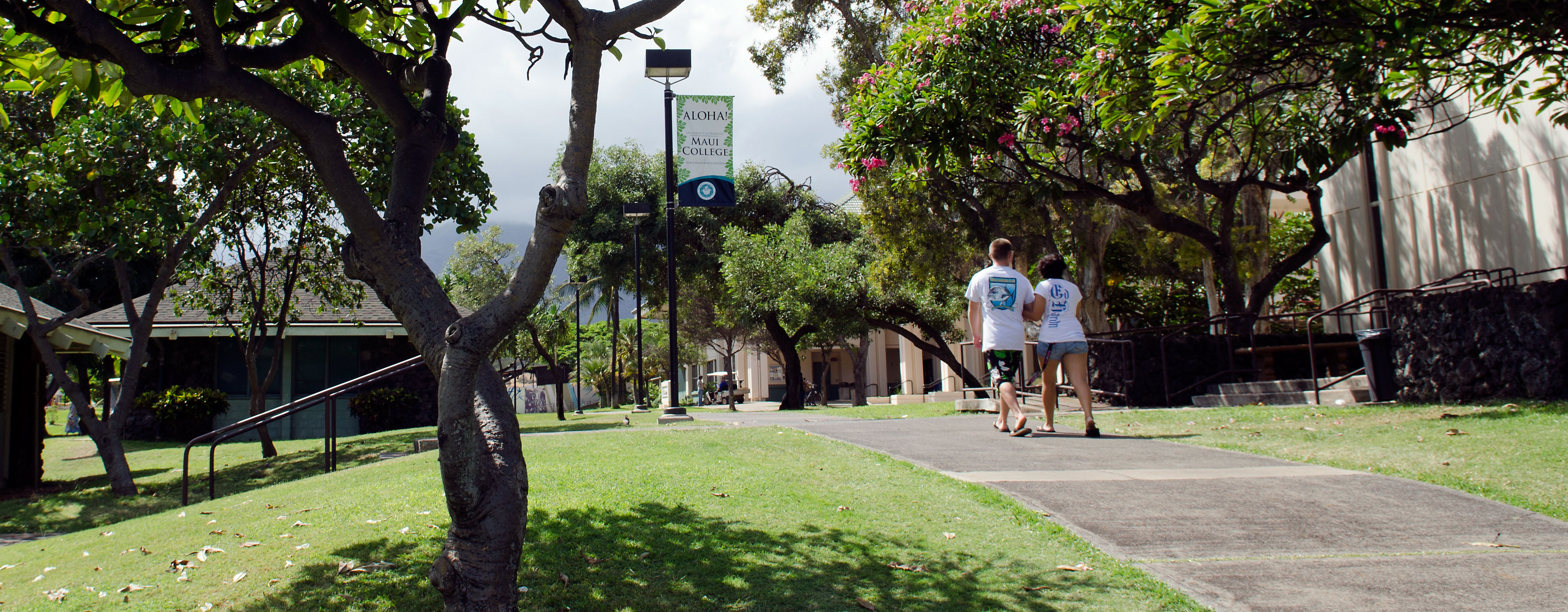 Students walking on a path t Maui Community College