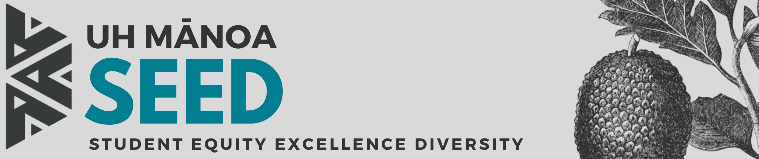 Student Equity Excellence Diversity (SEED)