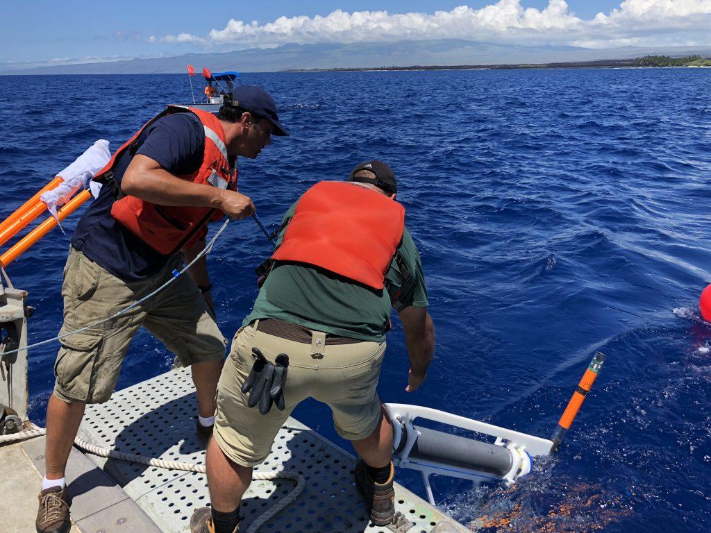Porpoise System Deployment
