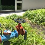 Water Pollutant Control