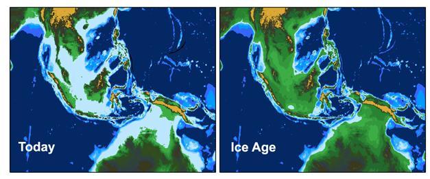 mānoa sea level influenced tropical climate during the