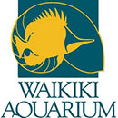 Celebrate the ocean through Waikīkī Aquarium photo contest