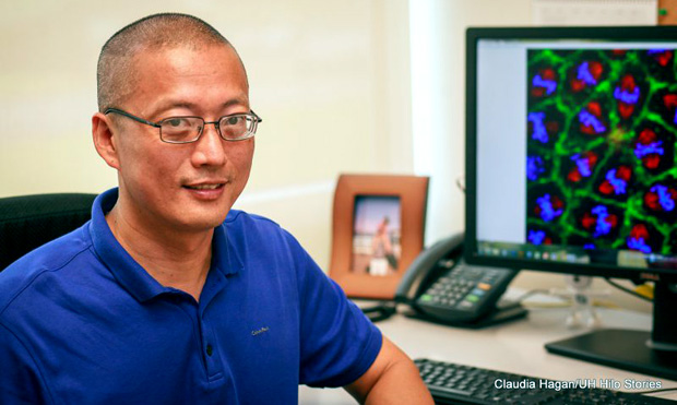 Biochemist At UH Hilo Looks For Clues To Cure Cancer
