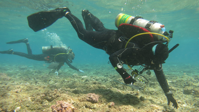 Hilo Students Spend Month At Sea Researching Coral Health In Northwestern Hawaiian Islands