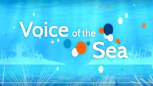 "Title tv screen with ""Voice of the Sea"""