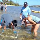 Kapiʻolani CC launches 1st UH sustainability certificate program