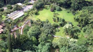 aerial photo of Lyon Arboretum in 2003