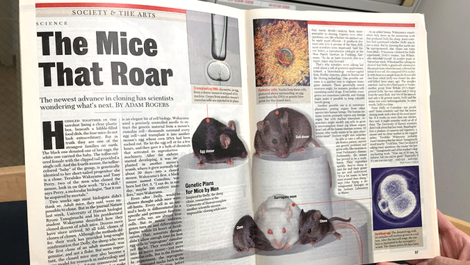 "magazine story titled ""The Mice That Roar"""