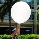 Student research at UH Mānoa flies sky high