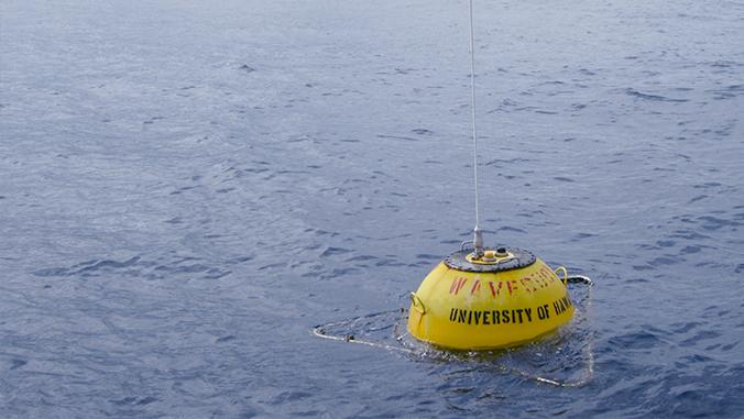Wave energy buoy in the ocean