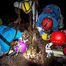 New species discovered in lava tubes by UH professor