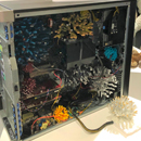 Connecting science, education, art and society through coral reefs