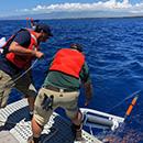 Ocean sensors help UH researchers understand Hawaiʻi Island aquifers