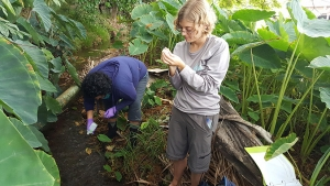 Sheree Watson and Catherine Hudson collect microbial water samples